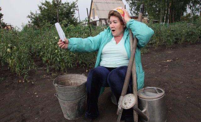 Полный список штрафов для садоводов