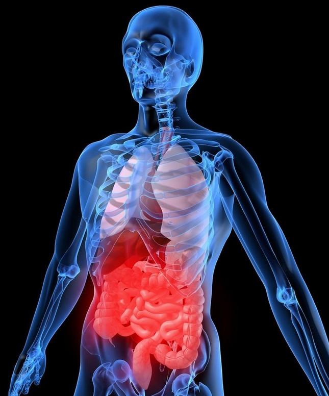 Как ВОССТАНОВИТЬ микрофлору кишечника БЕЗ лекарств: 10 способов