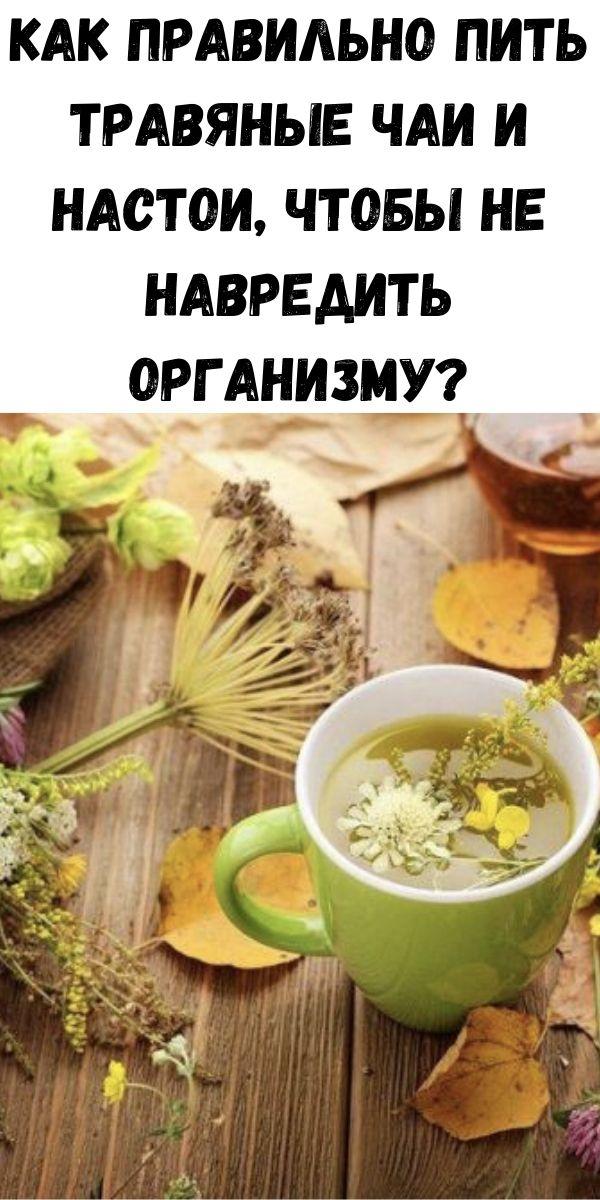 Как правильно пить травяные чаи и настои, чтобы не навредить организму?