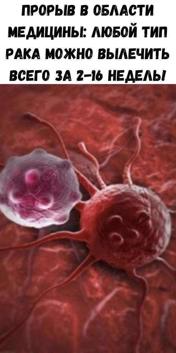 Прорыв в области медицины: Любой тип рака можно вылечить всего за 2-16 недель!