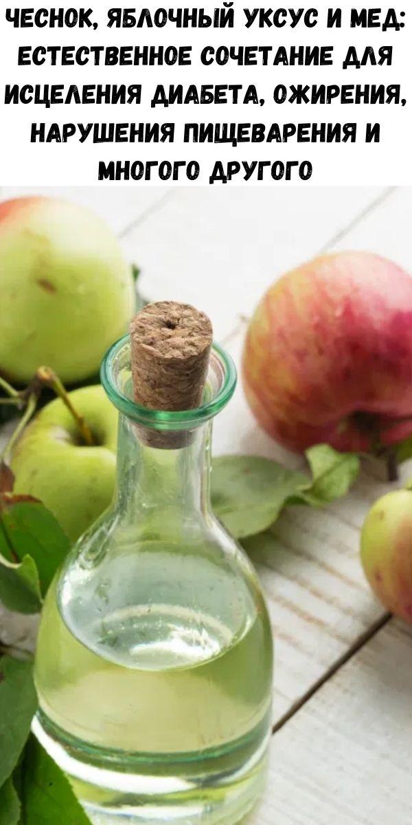 Чеснок, яблочный уксус и мед: естественное сочетание для исцеления диабета, ожирения, нарушения пищеварения и многого другого