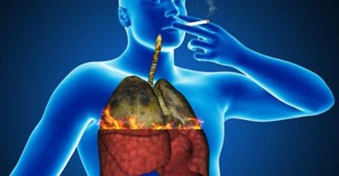 Напиток, очищающий легкие, который должны попробовать все кто курил или курит