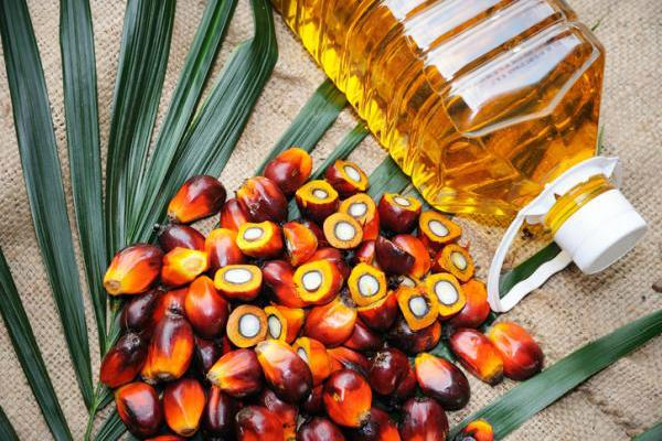Вредно ли пальмовое масло для здоровья? - Вот ответ