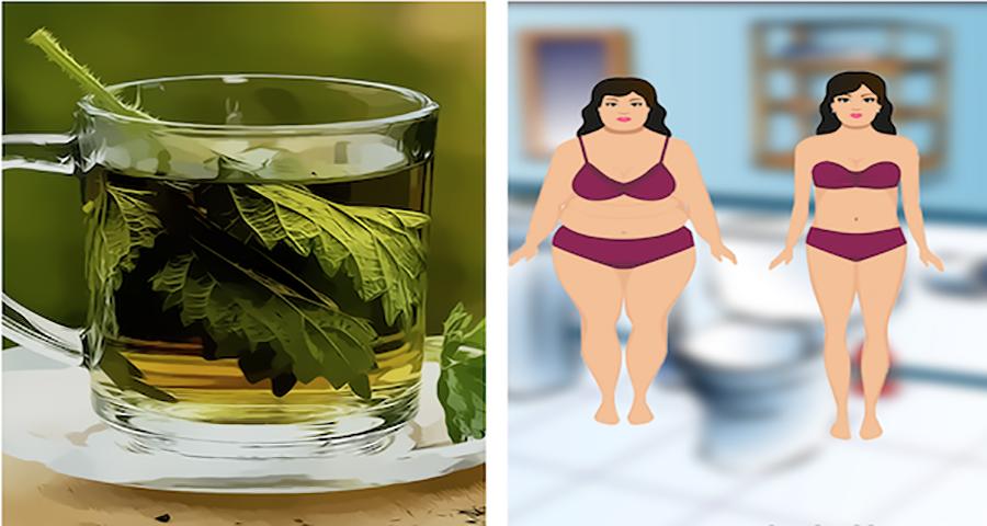 Чудо-трава: женщина весила 72 кг в четверг, а в субботу – уже 67 кг!