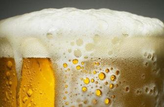 5 научно обоснованных причин пить пиво